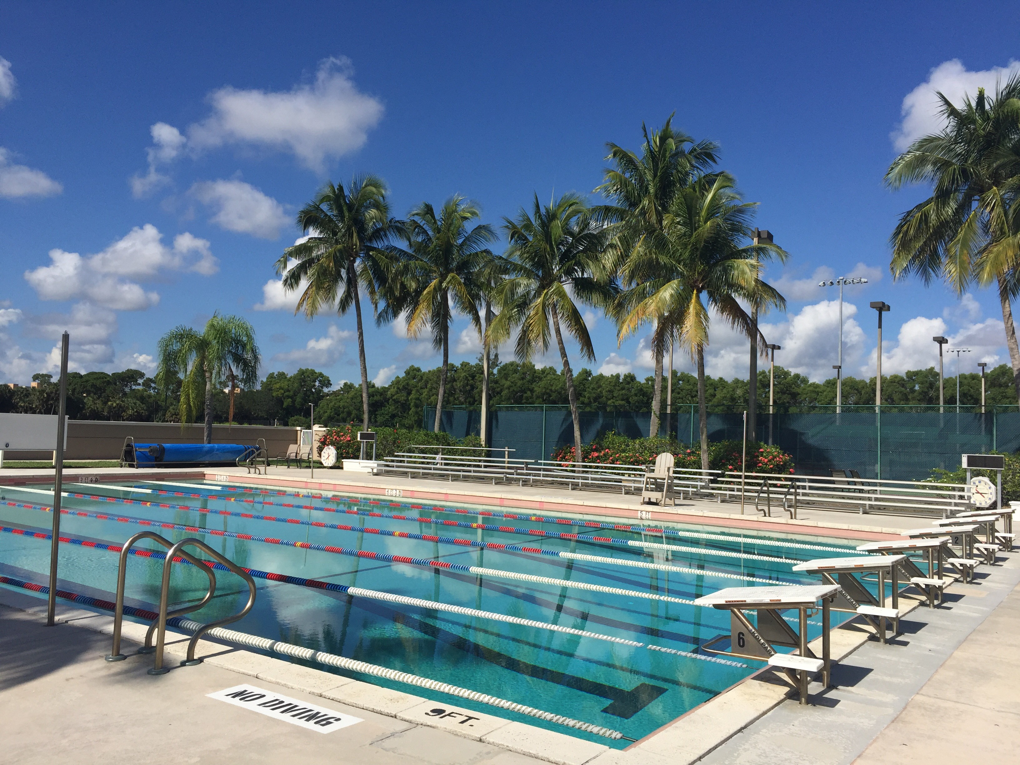 Swimming Pool Foundations : Swimming oxbridge academy foundation inc